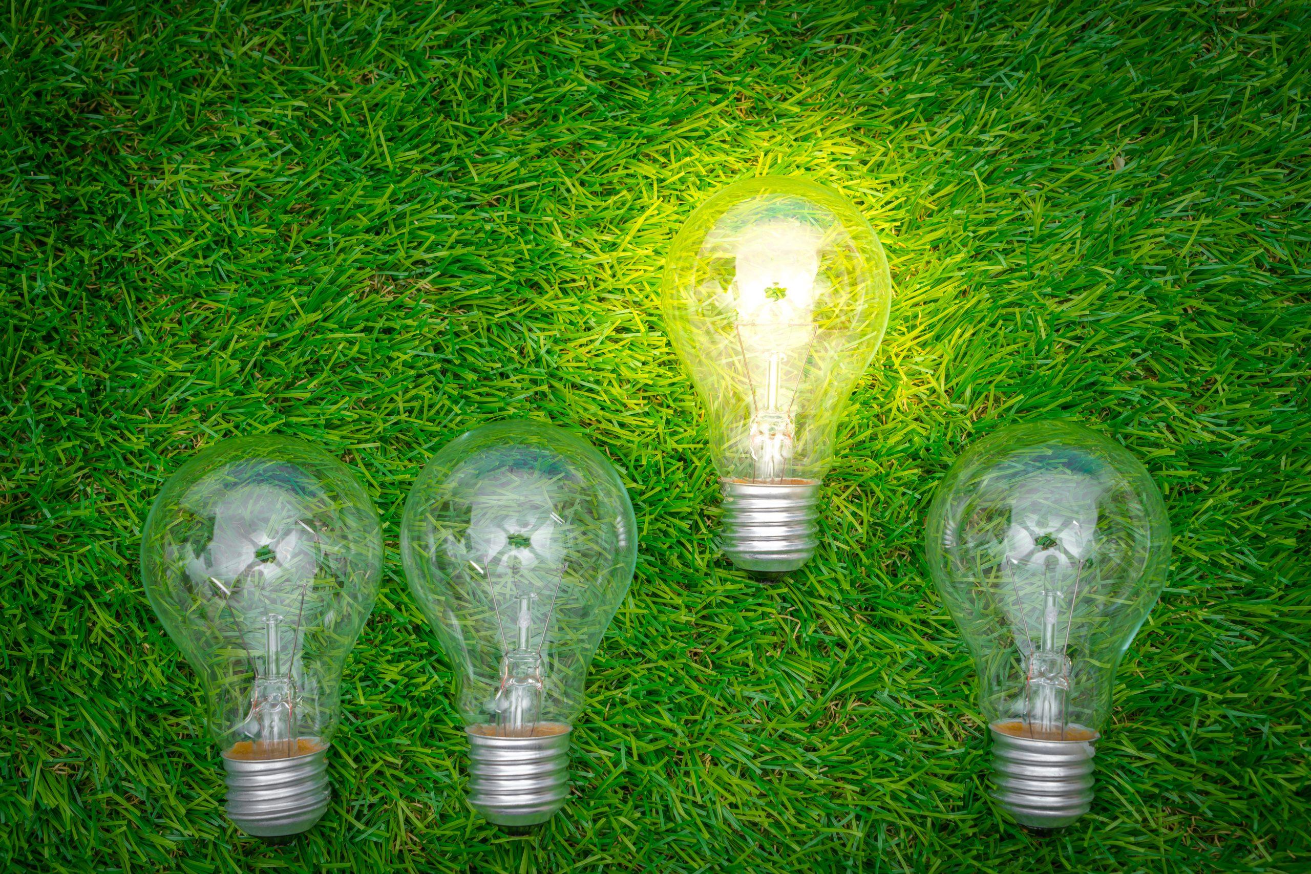 Енергийна ефективност - еко крушки